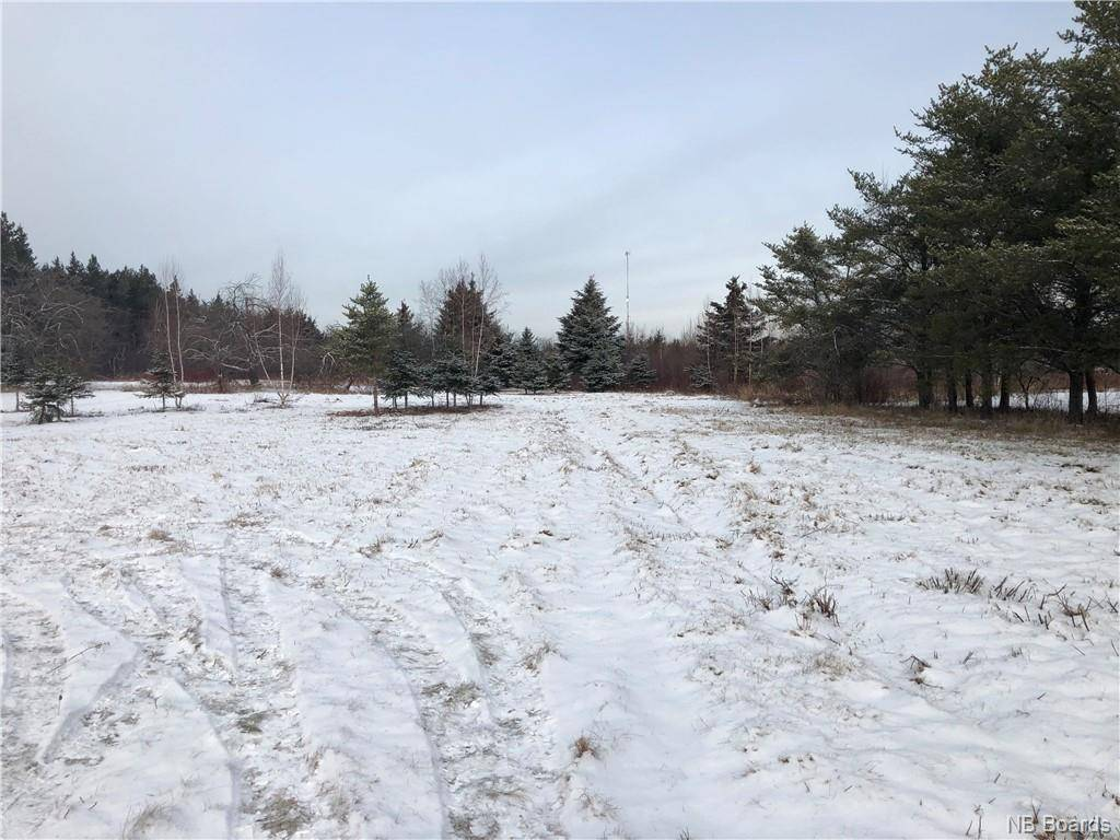 Home for sale at  - Rte Saint-isidore New Brunswick - MLS: NB038599