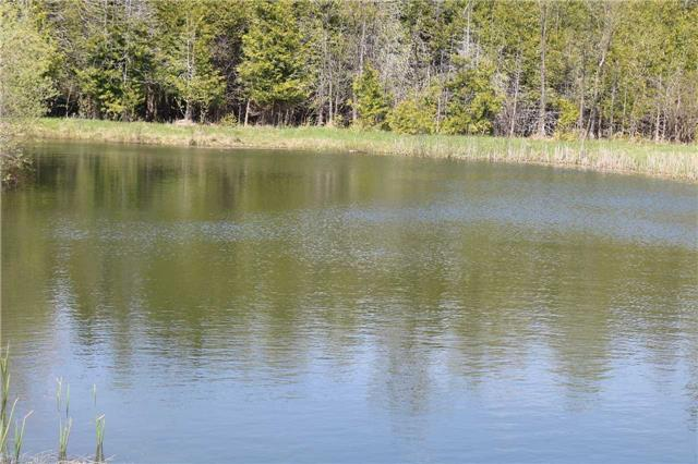 Removed: 0 12th Concession B Road, Grey Highlands, ON - Removed on 2017-10-30 05:47:22