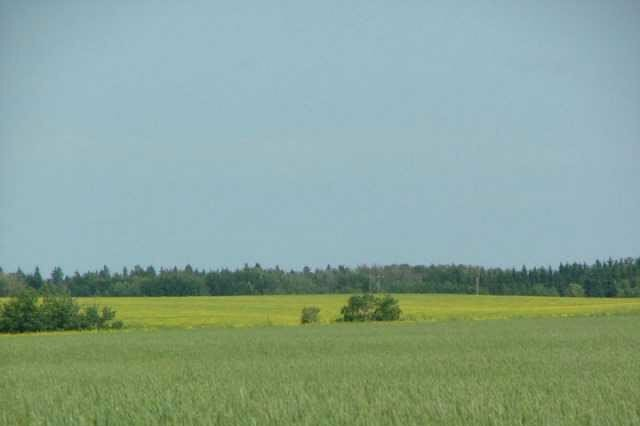 Home for sale at 0 A51069 Hwy 814 Hi Rural Leduc County Alberta - MLS: E1019795