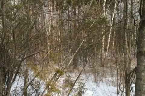 Residential property for sale at 0 Ballyduff Rd Kawartha Lakes Ontario - MLS: X4708086