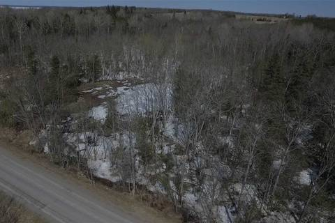Residential property for sale at 0 Birch Point Rd Kawartha Lakes Ontario - MLS: X4362181