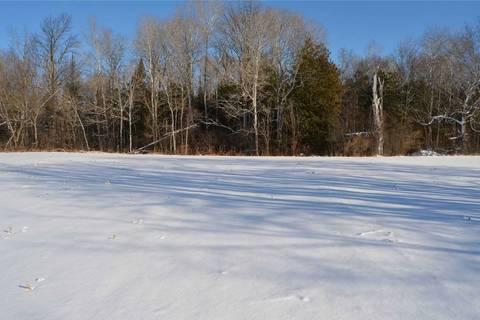 Home for sale at 0 Bush Rd Kawartha Lakes Ontario - MLS: X4619328