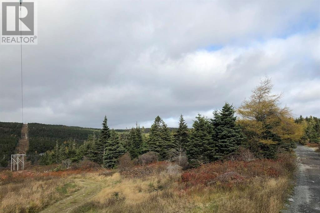 Home for sale at 0 Forest Rd Carbonear Newfoundland - MLS: 1223878