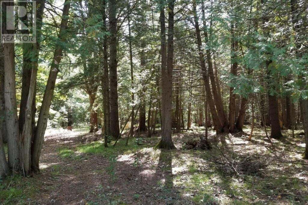 Residential property for sale at 0 Hillside Dr Burnt River Ontario - MLS: 40022154