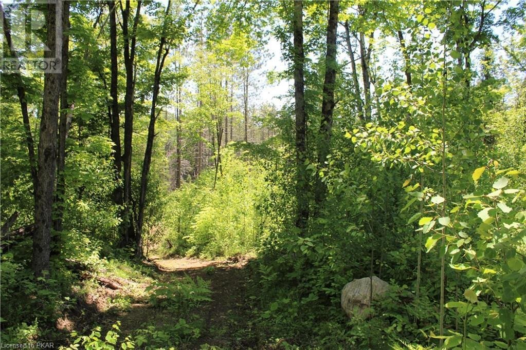 Residential property for sale at 0 Logging Rd Hastings Highlands Ontario - MLS: 40045978