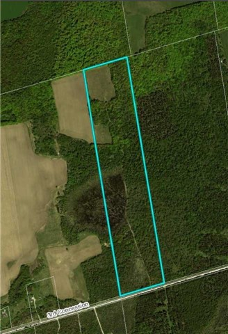 Removed: 0 Lot 44 3rd Conc Road, Grey Highlands, ON - Removed on 2018-06-15 15:22:00