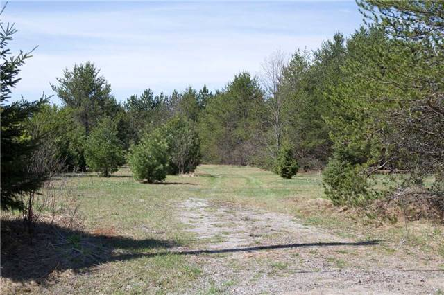 Removed: 0 Lot 49 Austin Drive Drive, Kawartha Lakes, ON - Removed on 2018-06-24 15:04:07