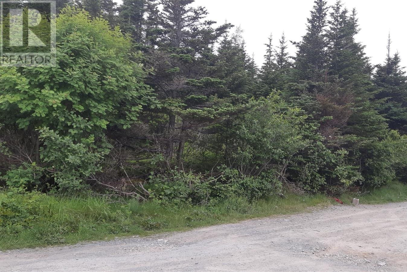 Residential property for sale at 0 Northside Track Rd Witless Bay Newfoundland - MLS: 1217399