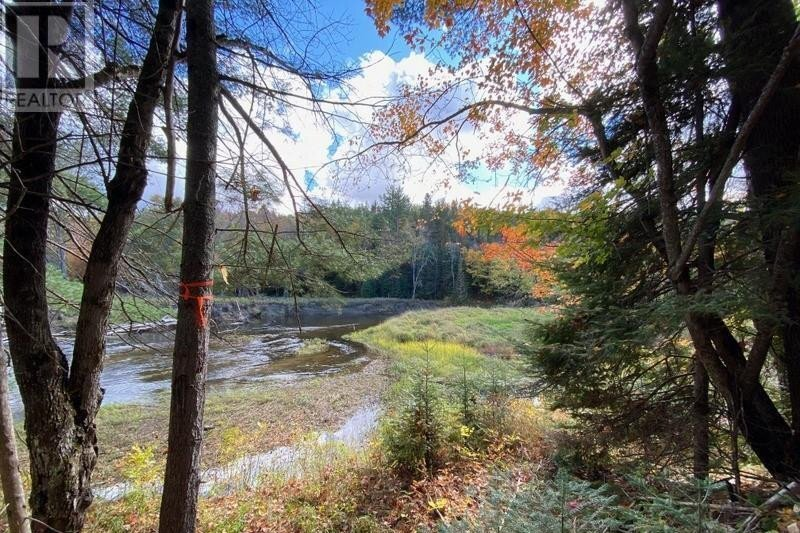 Home for sale at 0 Private Road Fronting On Bronson Rd Bancroft Ontario - MLS: 40039730