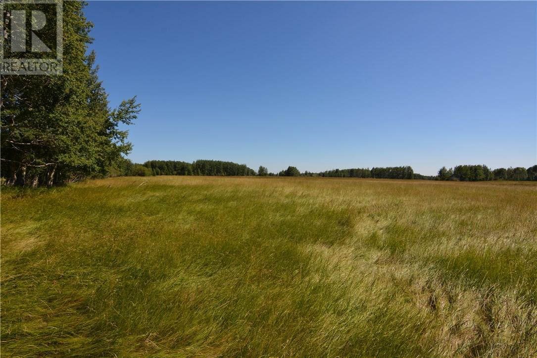 For Sale: 0 Range Road 42, Hoadley,  | 0 Bath Home for $249,000. See 8 photos!