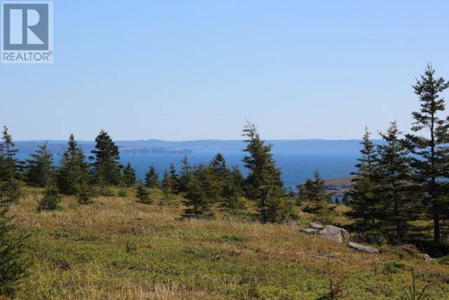 Home for sale at 0 Seymours Rd Spaniards Bay Newfoundland - MLS: 1208989