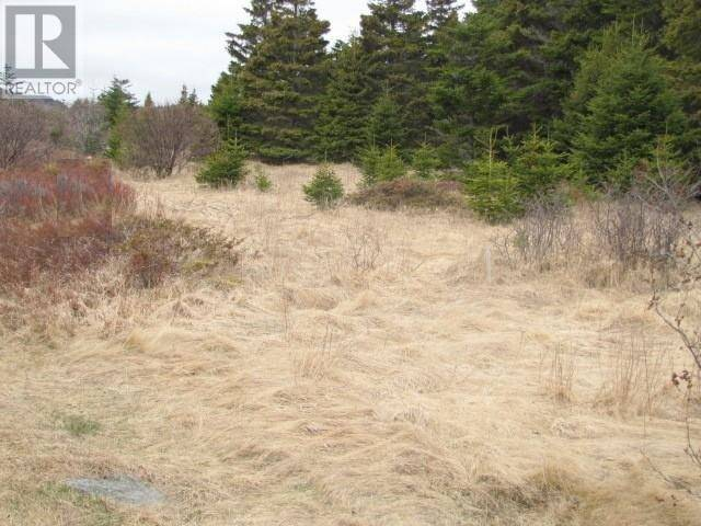 Home for sale at 0 Trestle Rd Broad Cove, Cbn Newfoundland - MLS: 1207138