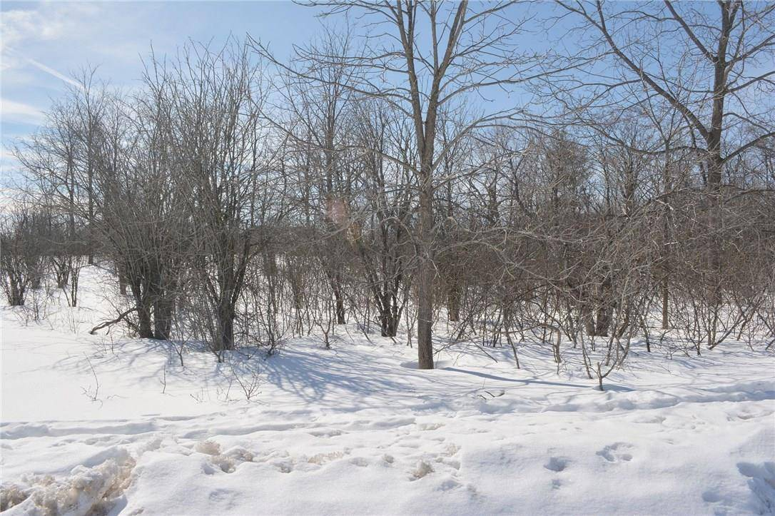 Residential property for sale at 0 Mitcheson St Almonte Ontario - MLS: 1145319