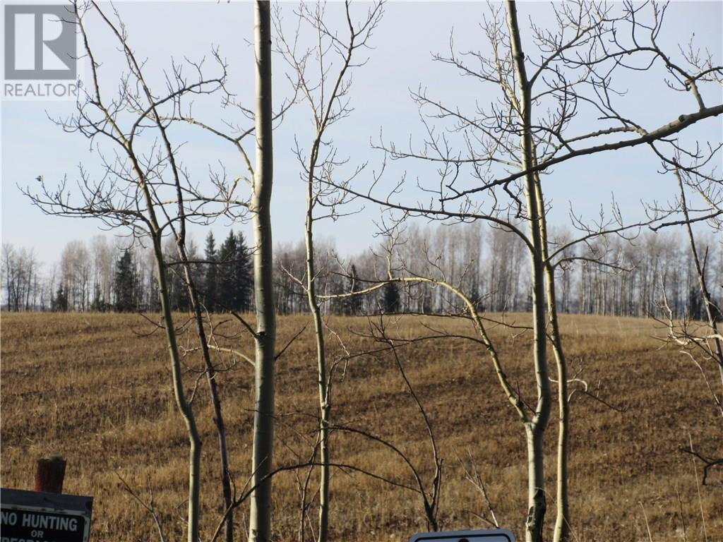 For Sale: 584 Highway , Sundre, AB   0 Bath Home for $175,000. See 28 photos!
