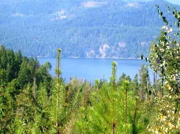Home for sale at 0 Kootenay Bay Rd Unit 10 Crawford Bay British Columbia - MLS: 2438401