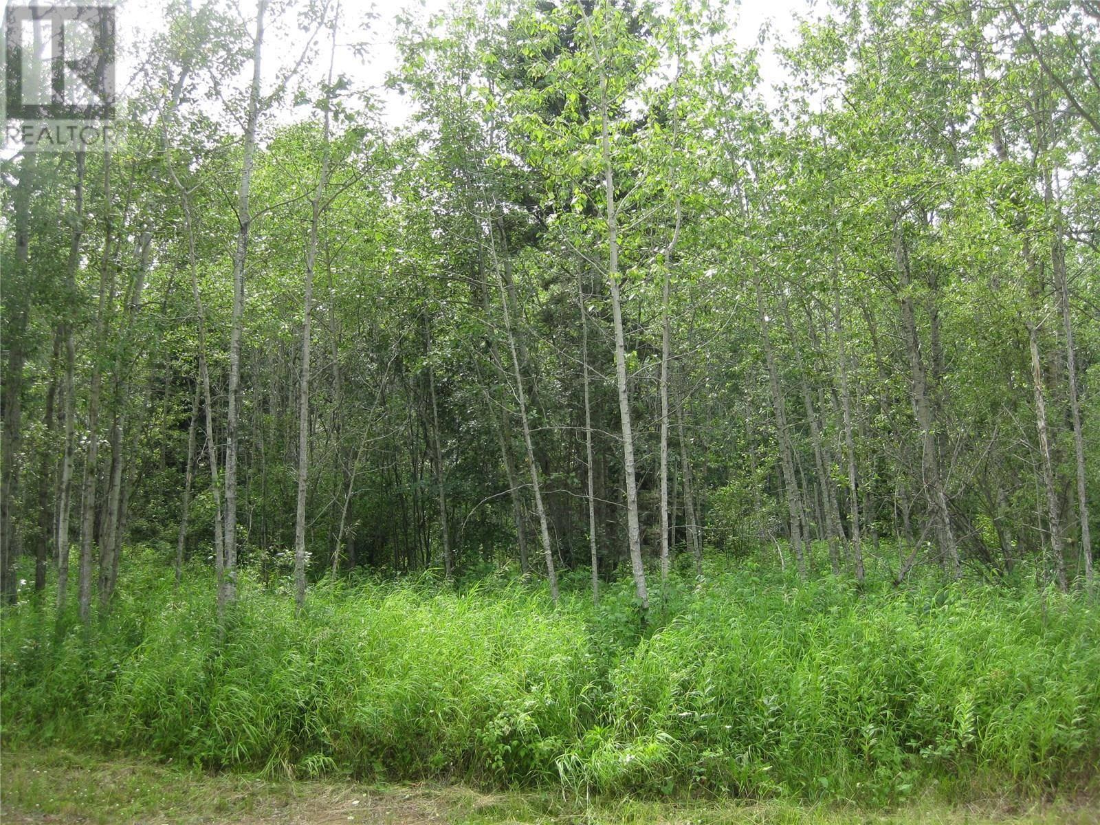 Residential property for sale at 103 Luciuk Ln Delaronde Lake Saskatchewan - MLS: SK757716