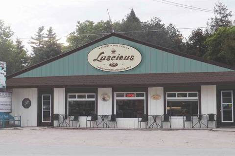 Commercial property for sale at 103 Second Ave South Bruce Peninsula Ontario - MLS: X4631595