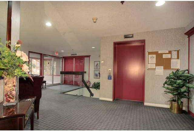 Condo for sale at 17519 98a Ave Nw Unit 106 Edmonton Alberta - MLS: E4179603