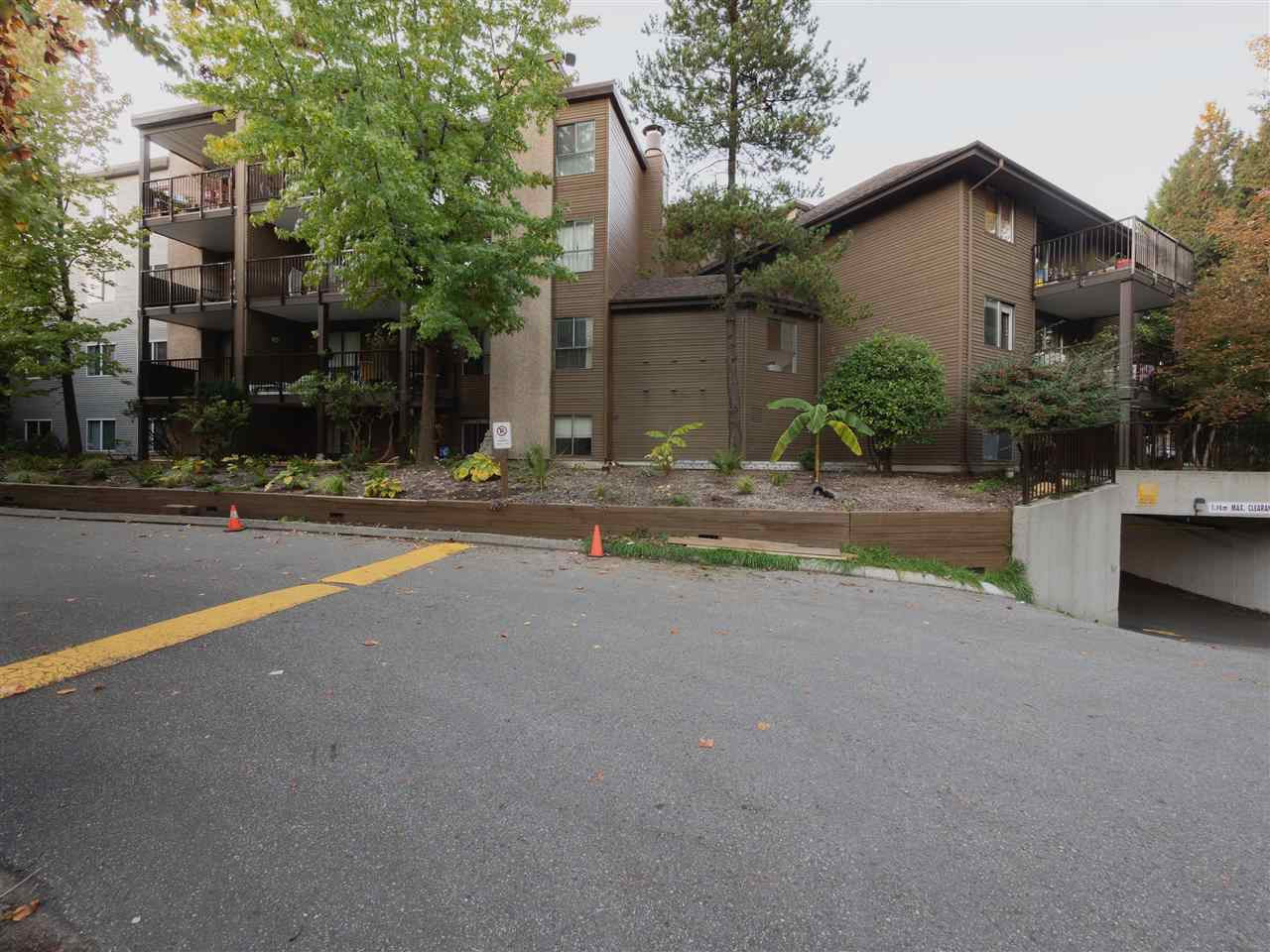 Sold: 107 - 10698 151a Street, Surrey, BC