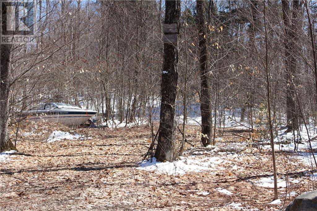 Residential property for sale at 1080 Mcarthur Point Rd Baysville Ontario - MLS: 255454