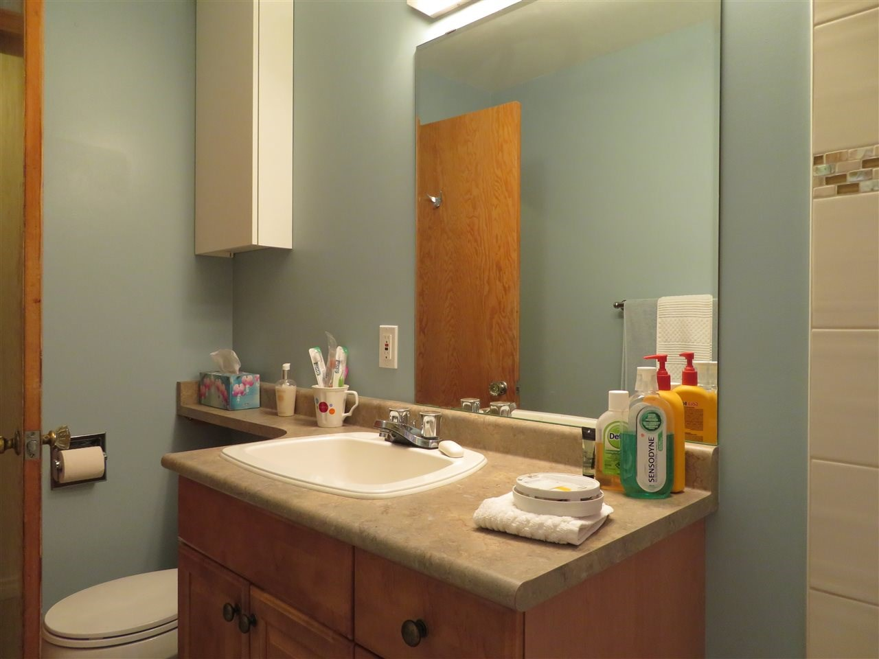 For Sale: 10823 69 Avenue, Edmonton, AB | 3 Bed, 2 Bath House for $398,800. See 30 photos!