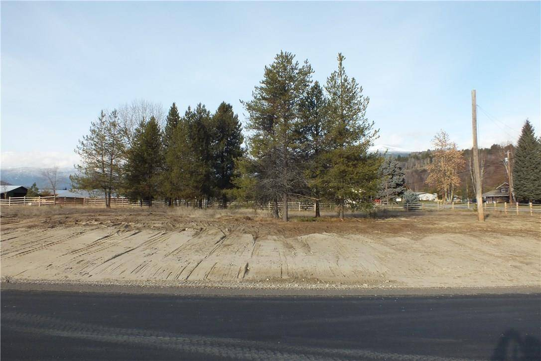 Home for sale at 1083 Elvkiew Road  Ootischenia British Columbia - MLS: 2435503