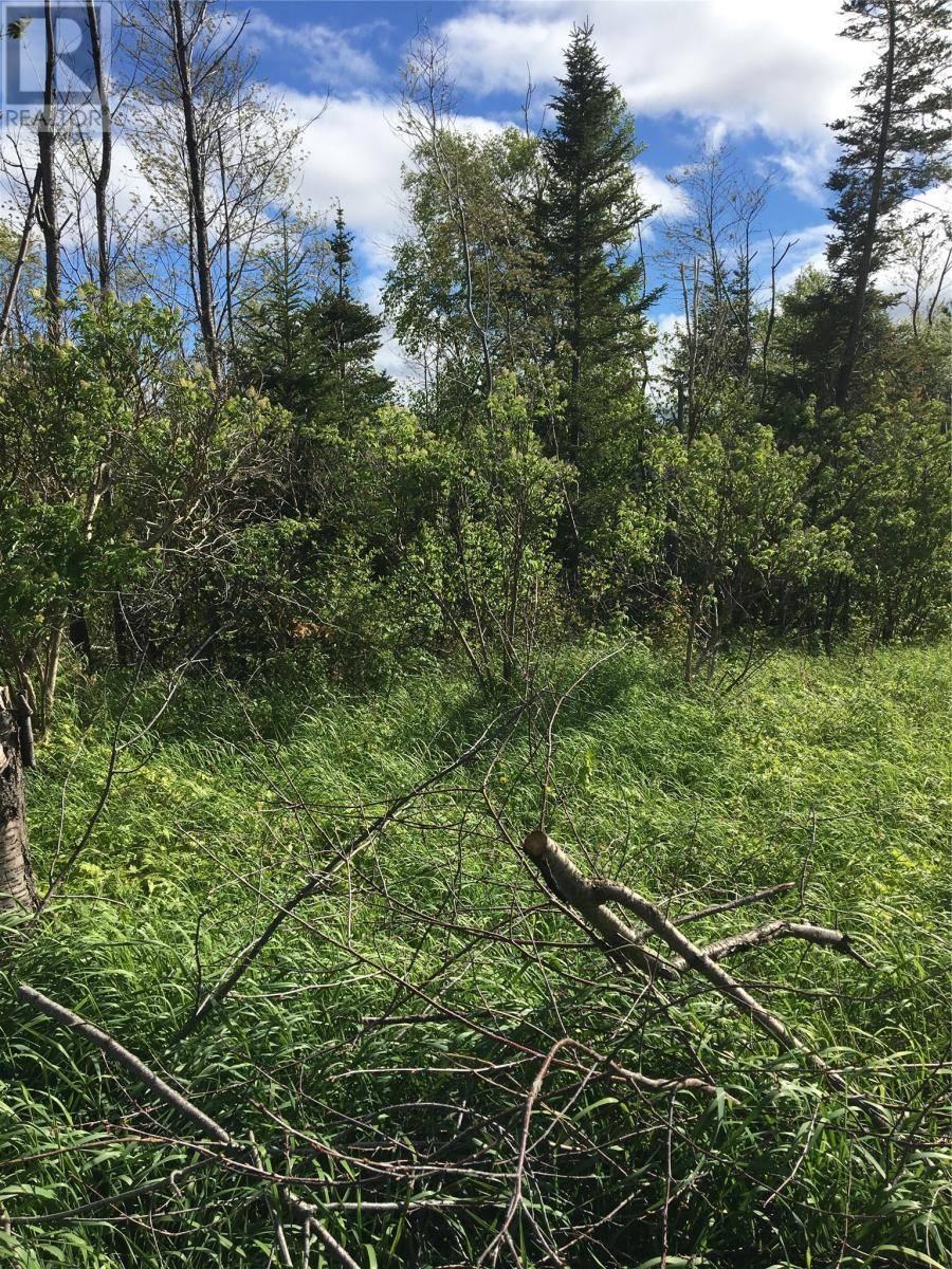 Home for sale at 10 Jeddores  Deer Lake Newfoundland - MLS: 1197726