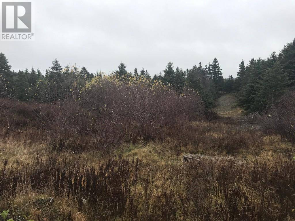 Residential property for sale at Lot 11 Main St Unit 11 Clarkes Beach Newfoundland - MLS: 1204968