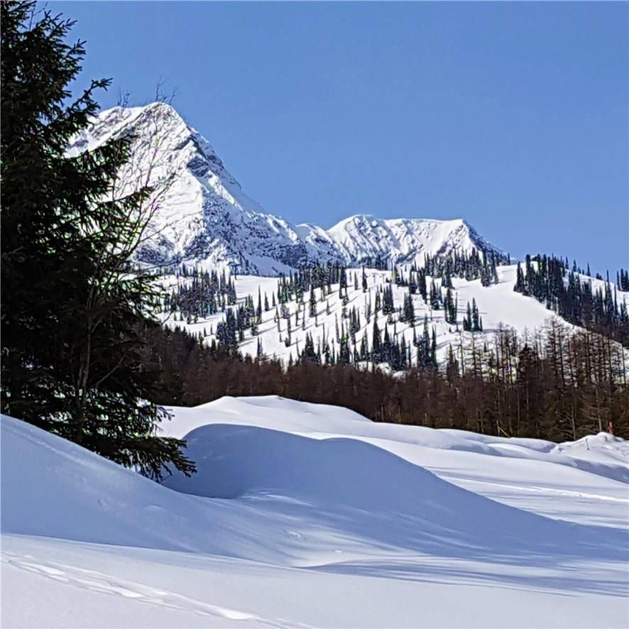 11 - 0 Timberlanding Estates , Ski Hill Area | Image 1