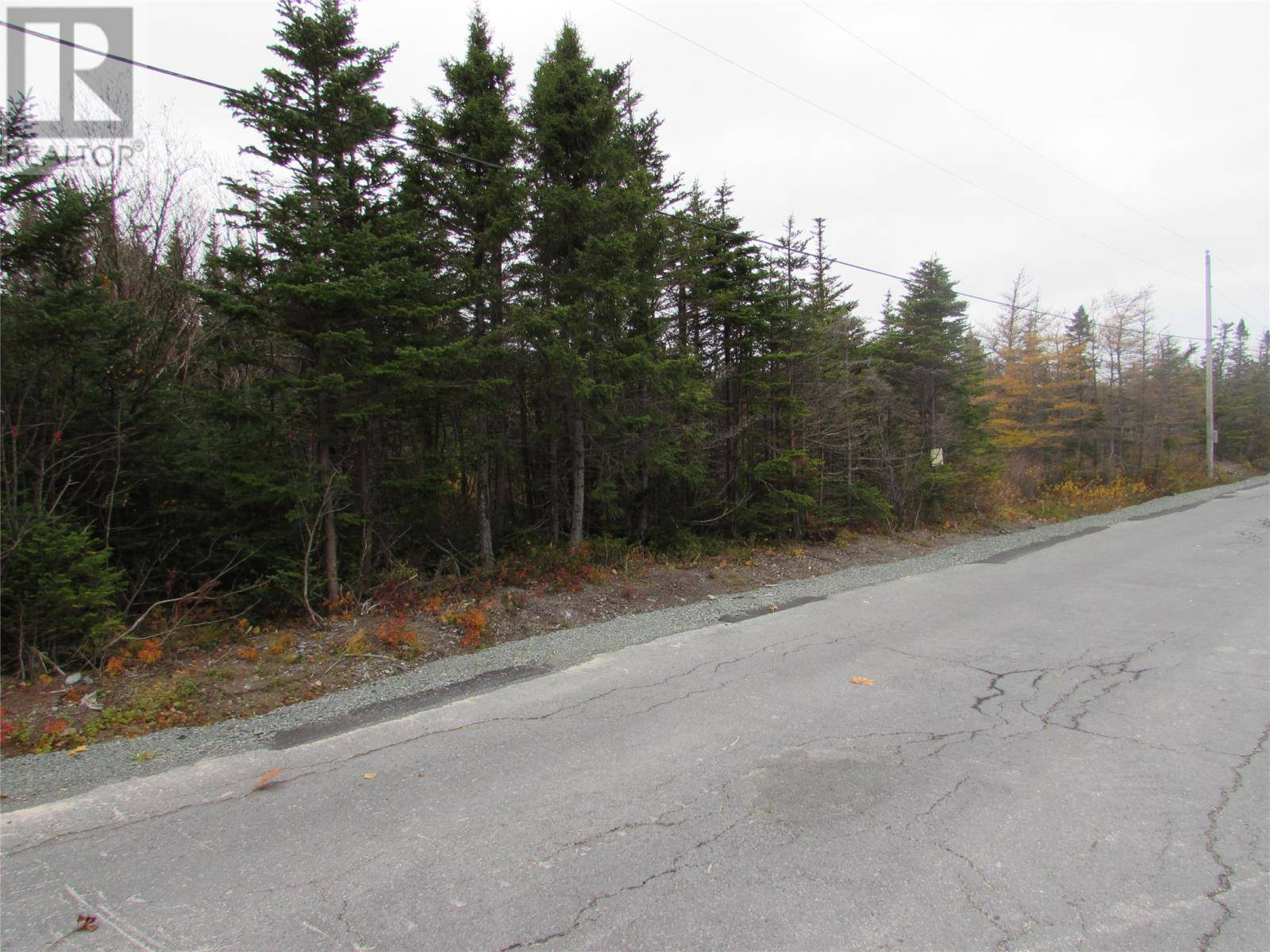 Home for sale at 111 Conran's Rd Chapel's Cove Newfoundland - MLS: 1207135