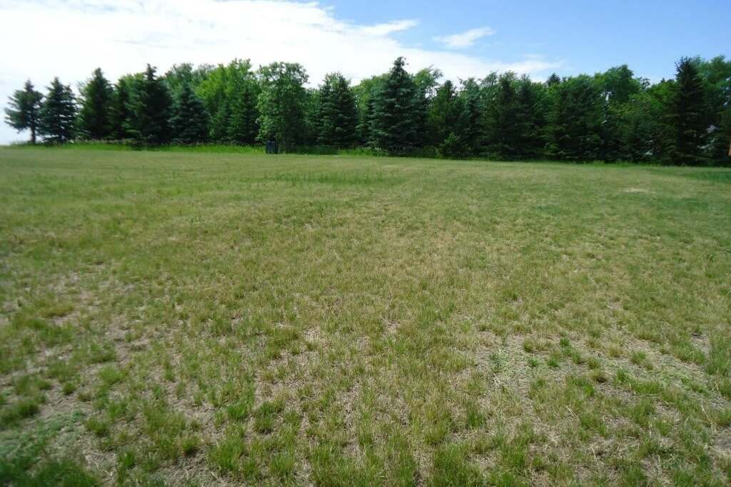 Residential property for sale at 111 Meadowlark Ct Hitchcock Saskatchewan - MLS: SK815520