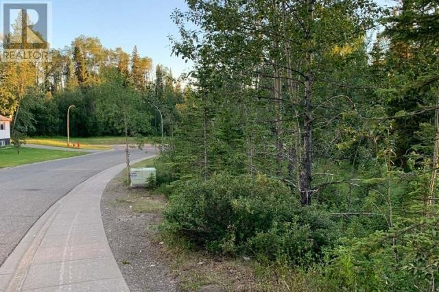 Residential property for sale at 116 Kinuseo Ave Tumbler Ridge British Columbia - MLS: 184837