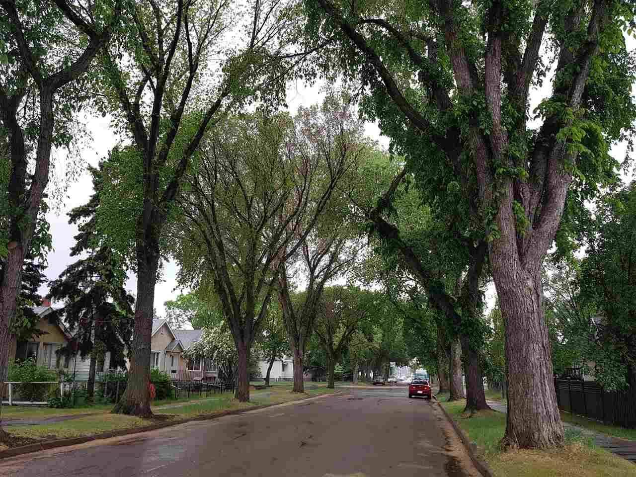 11916 95 Street Nw, Edmonton | Image 2