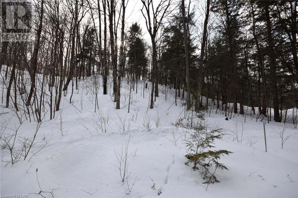 Residential property for sale at 1195 Twist Ln Haliburton Ontario - MLS: 247527
