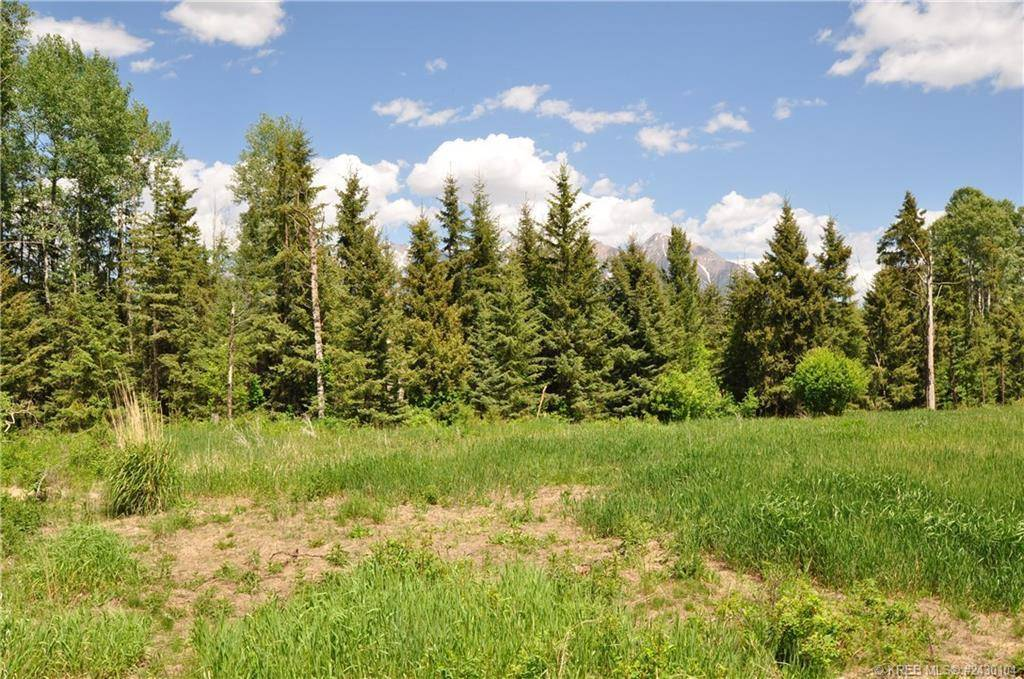 Home for sale at Lot 12 Foothills Drive  Unit 12 Ft. Steele To Wardner British Columbia - MLS: 2450797