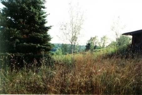 Home for sale at 1256 Monck Rd Kawartha Lakes Ontario - MLS: X4408596