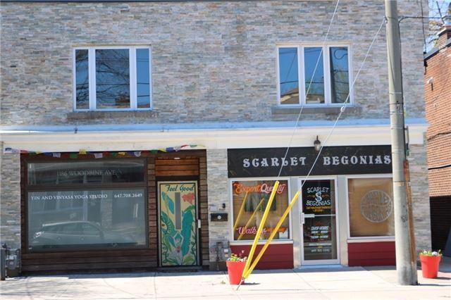 Bat In Toronto For Rent on raccoon in toronto, squirrels in toronto, snakes in toronto,