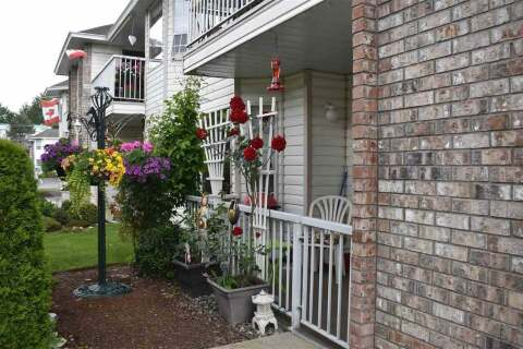 Townhouse for sale at 2919 Trafalgar St Unit 13 Abbotsford British Columbia - MLS: R2464086