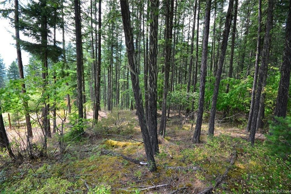 Residential property for sale at Lot 13 Pine Ridge Road  Unit 13 Kaslo British Columbia - MLS: 2450055