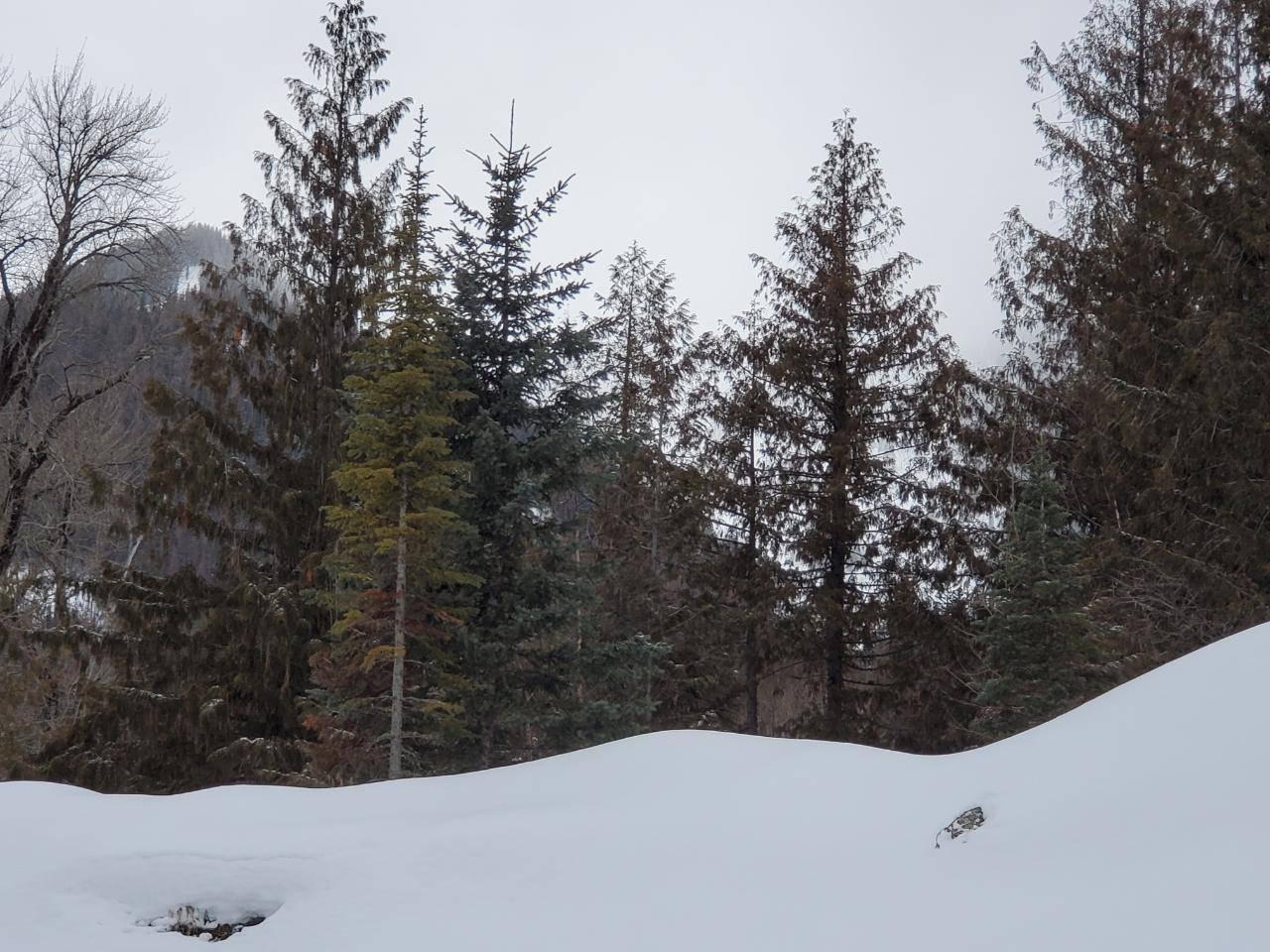 Home for sale at 0 Timberlanding Estates  Unit 13 Ski Hill Area British Columbia - MLS: 2450319