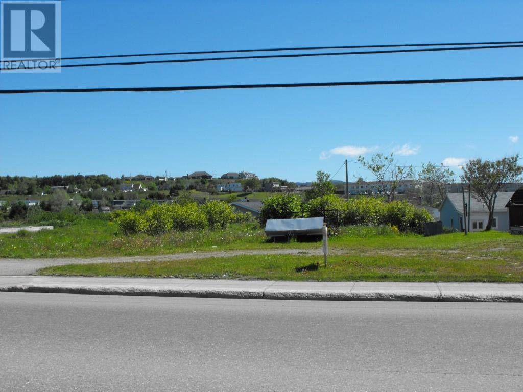 Home for sale at 132 Queen St Stephenville Newfoundland - MLS: 1186950