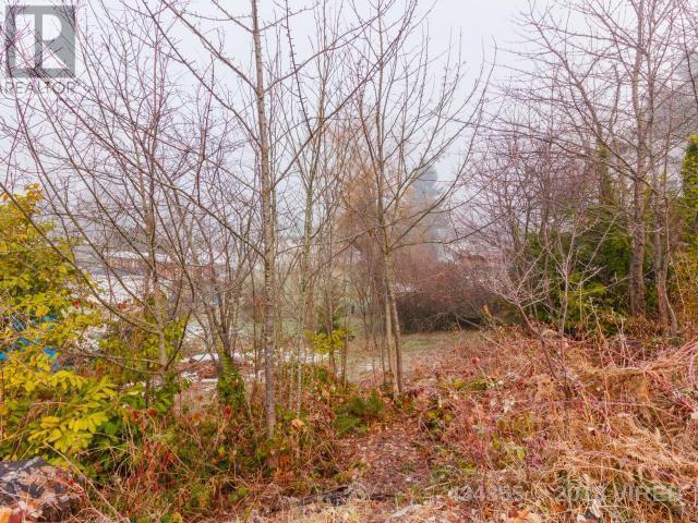 For Sale: 135 Sahtlam Avenue, Lake Cowichan, BC Home for $64,900. See 3 photos!
