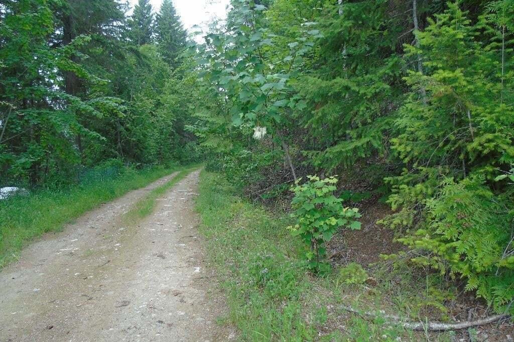 Home for sale at 14 Granite Pl Anglemont British Columbia - MLS: 10209682