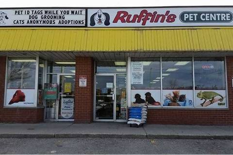 Commercial property for sale at 140 Guelph St Halton Hills Ontario - MLS: W4583442