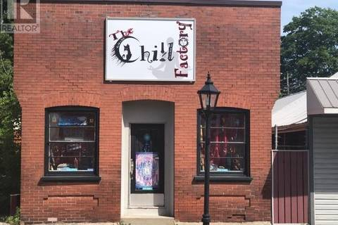Commercial property for sale at 151 Main St Delhi Ontario - MLS: 202708