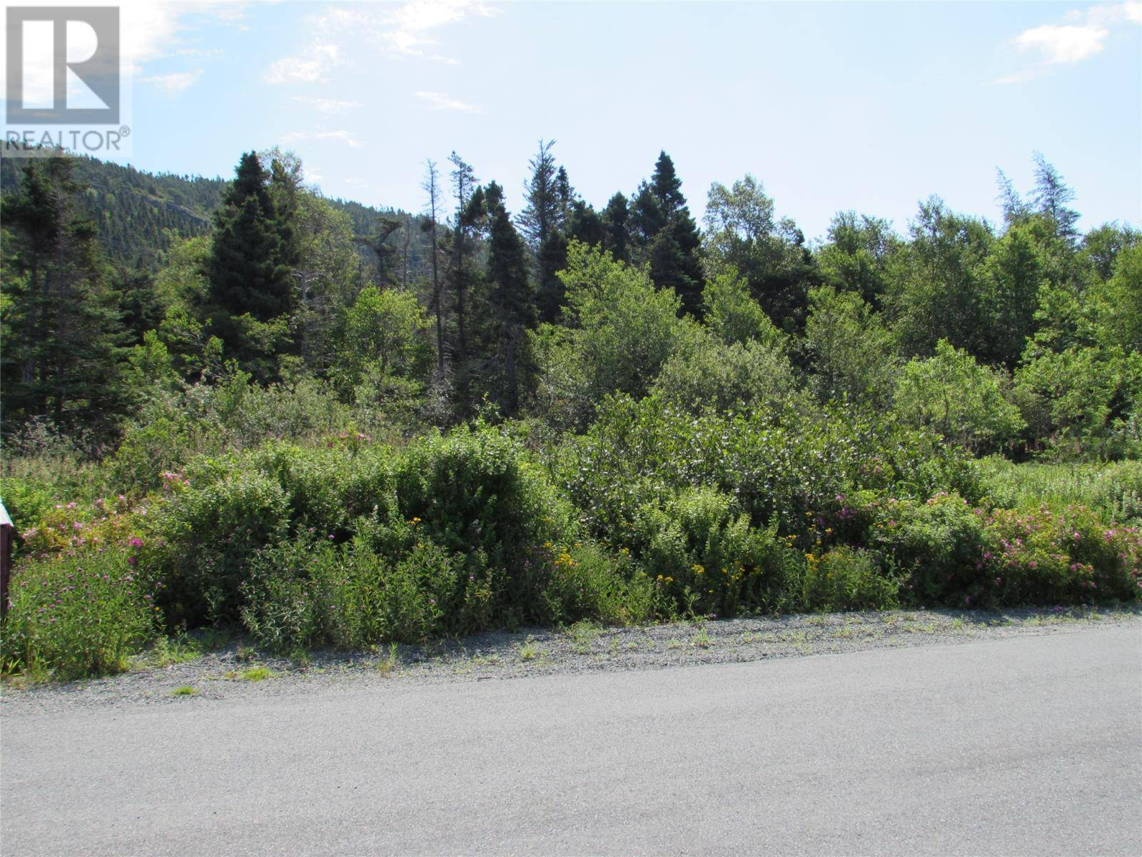Residential property for sale at 155 Country Path Rd Conception Bay South Newfoundland - MLS: 1207040