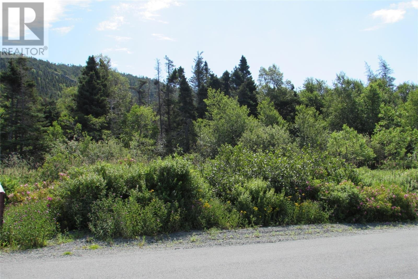 Residential property for sale at 155 Country Path Rd Conception Bay South Newfoundland - MLS: 1223975