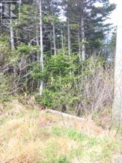 Residential property for sale at 0 Rhodie's Pond Rd Unit 16 Placentia Junction Newfoundland - MLS: 1197496