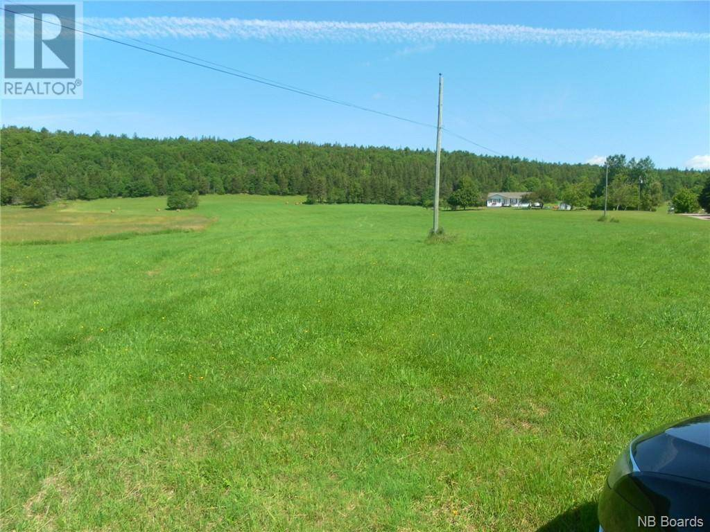 Residential property for sale at 169 Adair Rd Waterford New Brunswick - MLS: NB028807