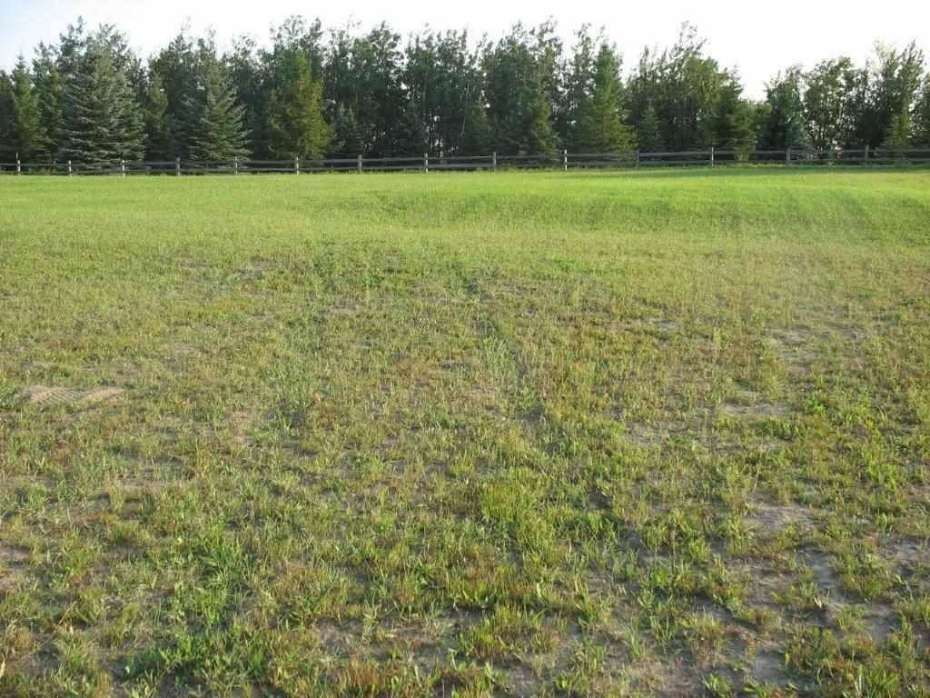 17 - 25515 Twp Road, Rural Parkland County | Image 1